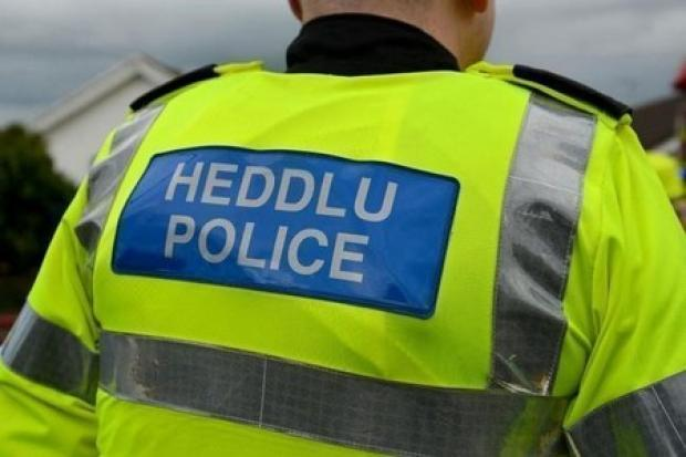 Police are investigating after a bench was set alight in Newcastle Emlyn