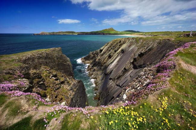 The Pembrokeshire Coast is praised by Lonely Planet as a  'ravishing stretch of cliff-flanked coves, thrashing seas...' . PICTURE: Michael Roberts/Getty Images