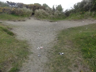 Litter has once again been strewn across the dunes at Poppit Sands