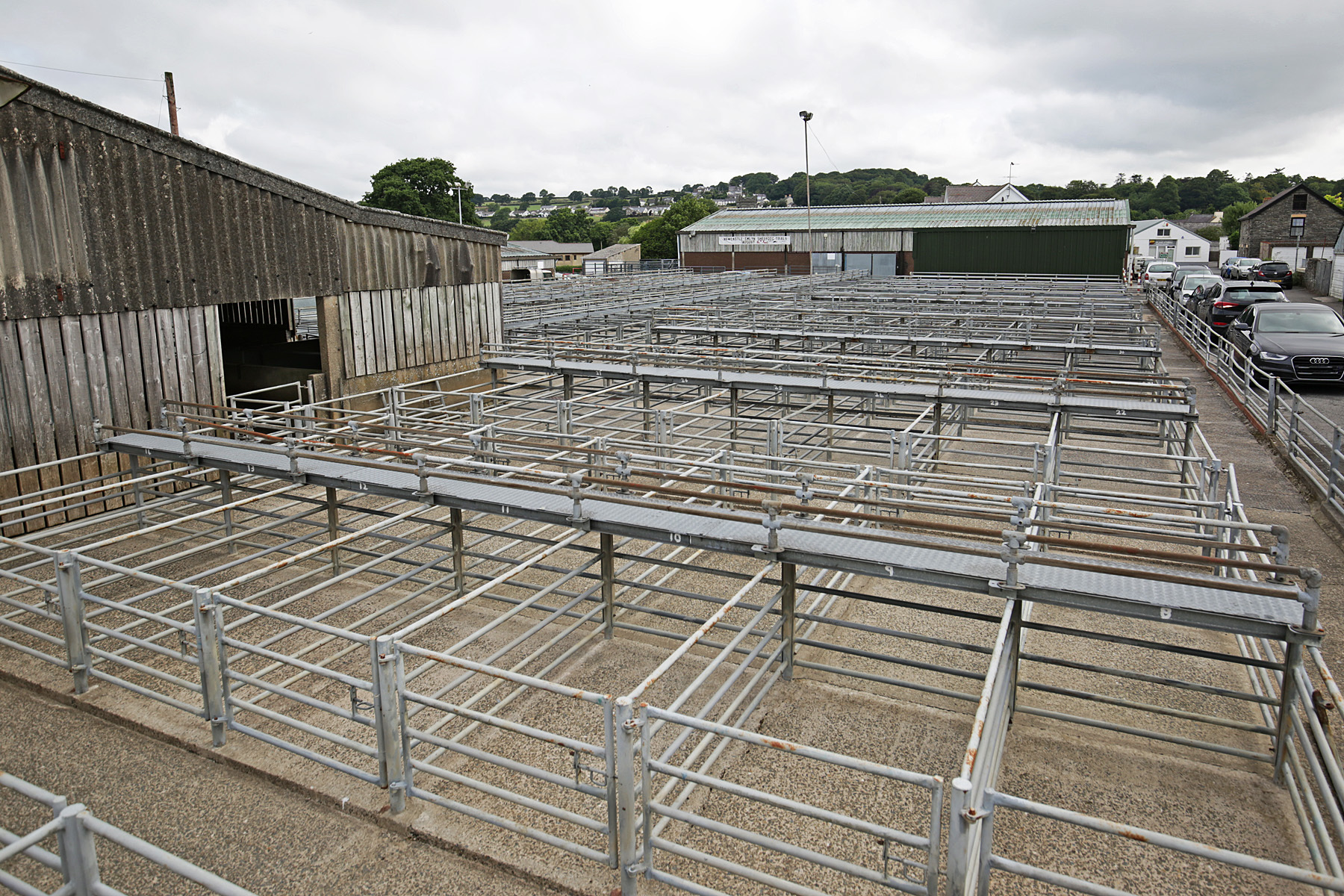 New firm takes over livestock marts PICTURE: Barry Adams